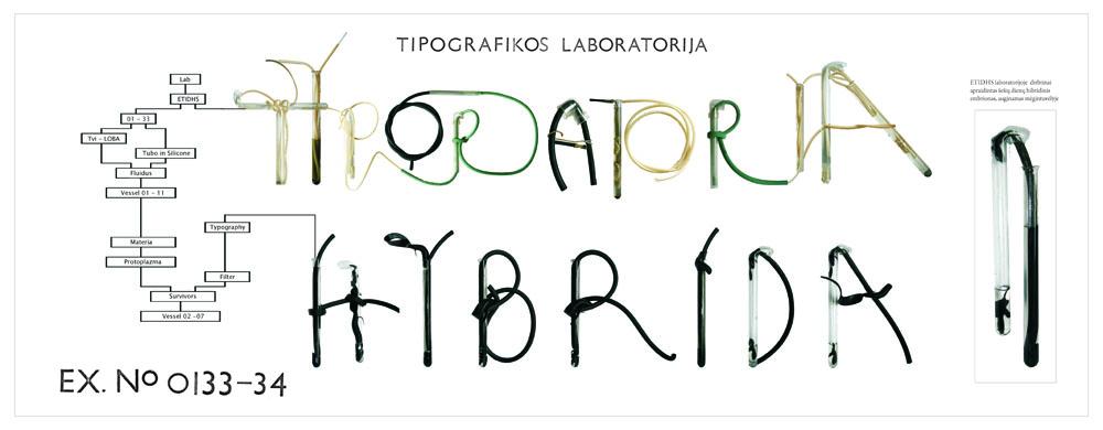 15 - TIPORATORIJA